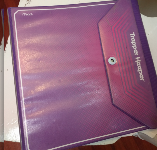 My beloved Trapper Keeper.  Allows me to take files from the office to the home, and keep my ongoing paper to do list safe and sound.